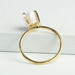 Gold Ring with Silver Nugget