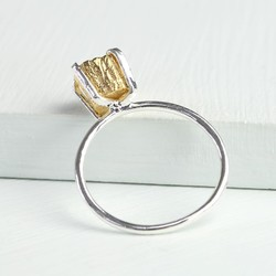 Silver Ring with Gold Nugget