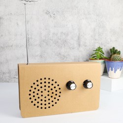 Cardboard FM Radio & MP3 Speaker