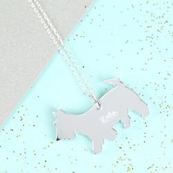 Personalised Acrylic Dog Necklace