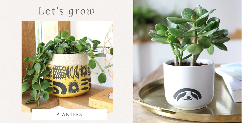 Planters and plant pots - Shop new indoor planters >>