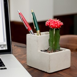 Kikkerland Small Desktop Concrete Planter & Pen Pot