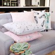 Lisa Angel Cotton Cushions