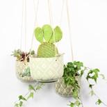 Stoneware Hanging Ria Plant Pot