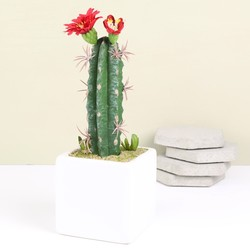 Tall Artificial Cactus