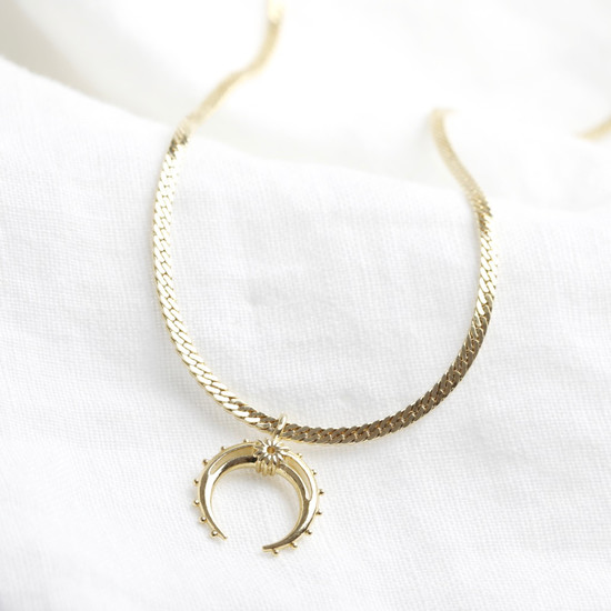Gold Horn Charm and Chain Choker Necklace
