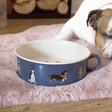 Lisa Angel Ceramic 'Where's the Turkey' Christmas Dog Food Bowl