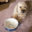 Lisa Angel 'Where's the Turkey' Christmas Dog Food Bowl