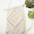 Lisa Angel Ladies' Make Your Own Macrame Wall Hanging Kit