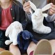 Lisa Angel Jellycat Bashful Twinkle Bunny Soft Toys