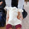 Lisa Angel Cute Jellycat Bashful Twinkle Bunny Soft Toy Stocking