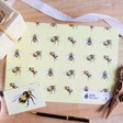 Lisa Angel Cute Sophie Botsford Bees Print Recycled Gift Wrap Set
