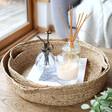 Lisa Angel Set of Two Woven Water Hyacinth Wicker Trays