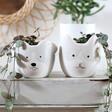 Lisa Angel Mini Ceramic Cat and Dog Planters