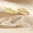 Lisa Angel Delicate Silver Feather Stud Earrings