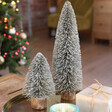 Set of 2 Natural Bristle Tree Decoration