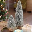 Set of 2 Natural Bristle Tree Decoration