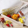 Lisa Angel Red and Yellow Autumnal Cut Dried Flowers Letterbox Gift