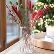 Lisa Angel Small Cylinder Glass Vase