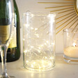 Lisa Angel 30 Battery Powered LED Silver Wire String Lights