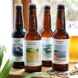 Lisa Angel Bottles of Malt Coast Ales