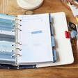 Lisa Angel Monthly Spread Carpe Diem Rainbow Personal Planner