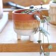 Lisa Angel Sass & Belle Mojave Glaze Brown Planter