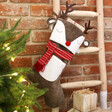 Lisa Angel Sass & Belle Reindeer Stocking