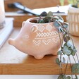 Lisa Angel Sass & Belle Terracotta Hedgehog Planter