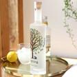 Lisa Angel Personalised 70CL Bottle of Sapling Vodka