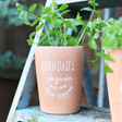Lisa Angel Grandad's Terracotta Garden Plant Pot
