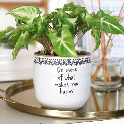 Large 'Do More Of What Makes You Happy' Planter