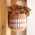 Lisa Angel Terracotta Hangable Planter