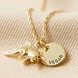 Lisa Angel Ladies' Personalised Gold Stegosaurus Necklace
