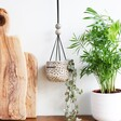 East of India Ceramic Spotty Hanging Planter
