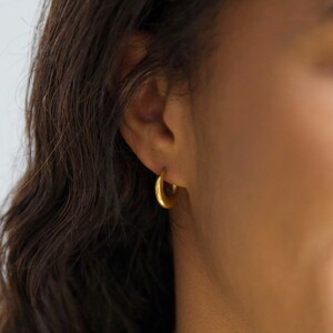 Gold Stainless Steel Moon Hoop Earrings
