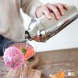 Ladies' Stainless Steel Cocktail Shaker