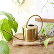 Kikkerland Vintage Gold Metal Watering Can