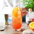 Lisa Angel Authentic Italian Campari Spritz Cocktail Making Kit