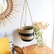 Natural Sass & Belle Black Striped Seagrass Hanging Planter, H15cm