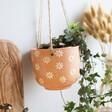 Lisa Angel Sass & Belle Daisies Hanging Terracotta Planter