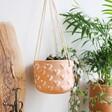 Terracotta Sass & Belle Heart Hanging Planter