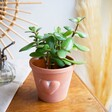 Sass & Belle Large Terracotta Planter With Heart From Lisa Angel