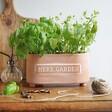 Long Sass & Belle Terracotta Herb Garden Trough Planter
