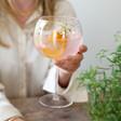 Lisa Angel LSA Iridescent Gin Glass