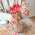 Lisa Angel Dried Lagurus Bunny Tails Grass in Blush Pink