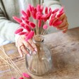 Lisa Angel Preserved Lagurus Bunny Tails Grass in Bright Pink