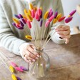 Lisa Angel Dried Lagurus Bunny Tails Grass in Pink, Purple and Mustard