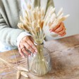 Lisa Angel Dried Lagurus Bunny Tails Grass in Soft Taupe