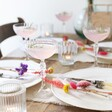 Lisa Angel Set of Rainbow Brights Dried Flower Place Settings Table Set Up
